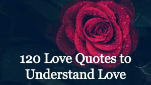 120 love quotes to understand love