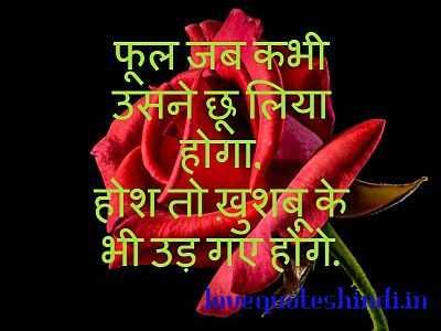 beautiful love shayari in hindi with images
